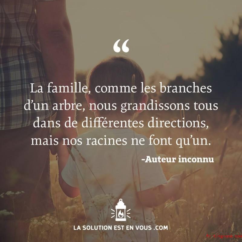 La famille, comme les branches d'un arbre