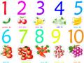 芬兰语结构:数字