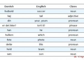 丹麦语会话:一张照片2