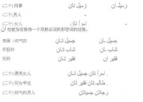 阿拉伯语基础语法:双数