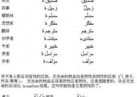 阿拉伯语基础语法:名词