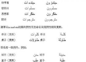阿拉伯语基础语法:复数1