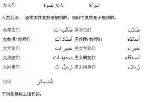 阿拉伯语基础语法:复数2