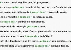 【辨析】Grace à 还是 A cause de ? (答案)
