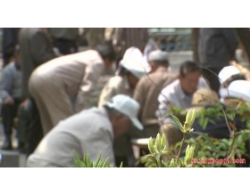 韩国经济:10年之后,韩国的2名年轻人赡养1名老人