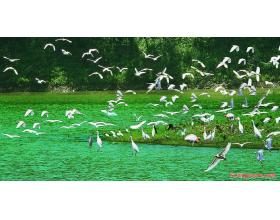 韩语阅读:韩文诗歌-호수(湖)